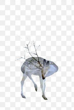 Watercolor Deer Fresh Material - Deer Watercolor Painting Drawing Art PNG