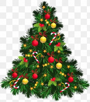 Christmas - Christmas Tree Christmas Ornament Clip Art PNG