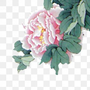 New Year's Day Chinese New Year Lantern Pink Peonies - Le Nouvel An Chinois Chinese New Year Lantern Festival New Years Day PNG
