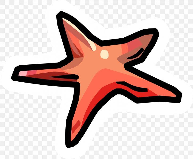 Club Penguin Island Starfish Invertebrate, PNG, 1552x1280px, Club Penguin, Animal, Club Penguin Island, Echinoderm, Invertebrate Download Free