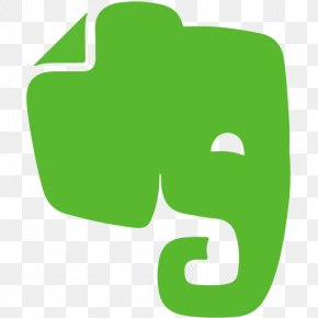 Evernote - Evernote User PNG