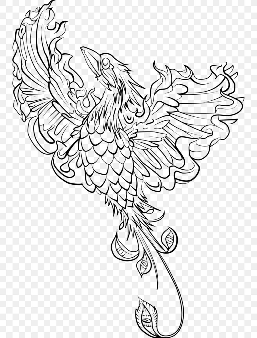 Coloring Book Adult Phoenix Drawing Page Png 741x1078px Coloring Book Adult Art Artwork Beak Download Free