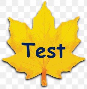 Achievement Test - Clip Art Maple Leaf Sugar Maple Red Maple Autumn Leaf Color PNG