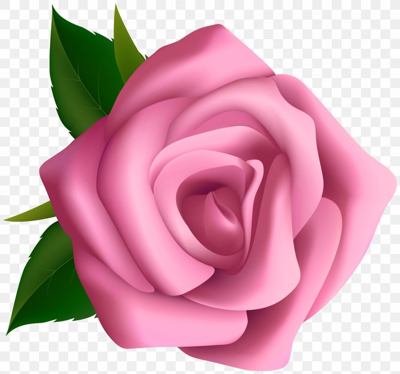 Rose Pink Flower Clip Art, PNG, 6268x5859px, Rose, Blog, Blue Rose, China Rose, Close Up Download Free