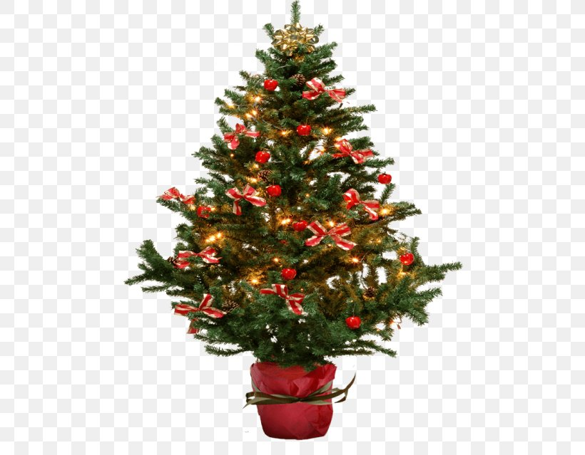 Christmas Tree Clip Art Fir Christmas Day, PNG, 480x639px, Christmas Tree, Christmas, Christmas Day, Christmas Decoration, Christmas Ornament Download Free