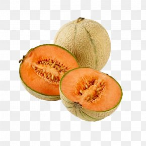 Cantaloupe Melon Images Cantaloupe Melon Transparent Png Free Download Download this free png photo for you design work. favpng com