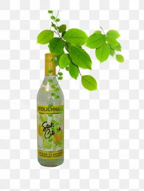 Juice Drinks Soda - Soft Drink Apple Juice Carbonated Drink Lemon-lime Drink PNG