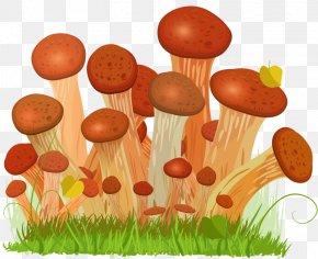 Hand Drawn Mushrooms - Honey Fungus Edible Mushroom Euclidean Vector Drawing PNG