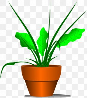 No Plants Cliparts - Houseplant Clip Art PNG