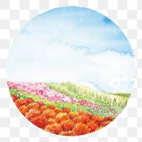 Color Field - Petal Ecoregion Circle PNG