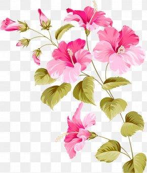 Flowers - Flower Hibiscus Euclidean Vector Plant PNG