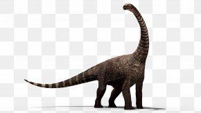 Dinosaur - Dinosaur Stegosaurus PNG