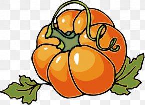 Autumn Cliparts - Cucurbita Pepo Pumpkin Pie Autumn Clip Art PNG