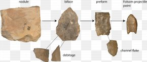 Folsom Tradition Projectile Point Knapping Folsom Point Debitage PNG