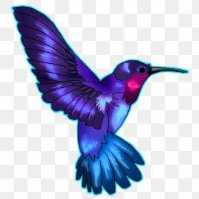 Hummingbird Tattoos Pic - Hummingbird Tattoo PNG