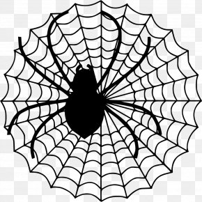 Net - Spider Web Clip Art PNG