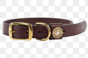 Dog Collar - Dog Collar Dog Collar Leash Belt PNG