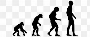 Evolution - Homo Sapiens Evolution 2.0: Breaking The Deadlock Between Darwin And Design Human Evolution Technological Revolution PNG