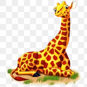 Northern Giraffe Clip Art Cartoon Vector Graphics PNG