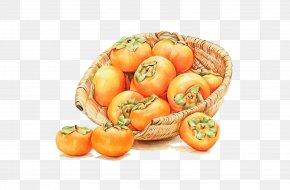 Basket Of Persimmon - Shuangjiang Japanese Persimmon Poster Autumn PNG