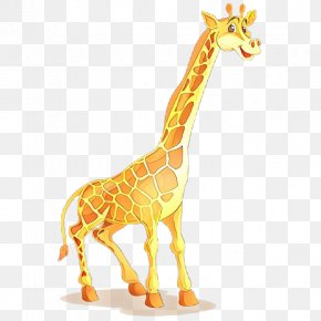 Illustration Northern Giraffe Image Vector Graphics Shutterstock PNG