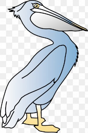 Bird - Beak Bird Pelecaniformes American White Pelican The Blue Pelican Inn & Restaurant PNG