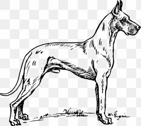 Puppy - Great Dane Dalmatian Dog Greyhound Coloring Book Pit Bull PNG
