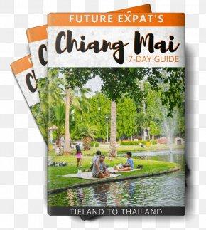 Chiang Mai - Mae Ngat Somboon Chon Dam Songkran Water Fight Travel Ruen Come In Hotel Chaing Mai PNG