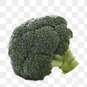 Broccoli Vegetables - Broccoli Vegetable Organic Food Tomato PNG