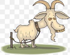 TIRED - Boer Goat Sheep Cartoon Goat Farming PNG