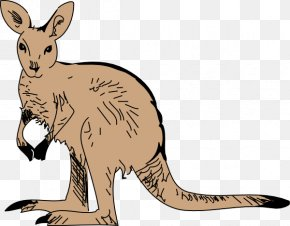 Free Wildlife Clipart - Kangaroo Free Content Clip Art PNG