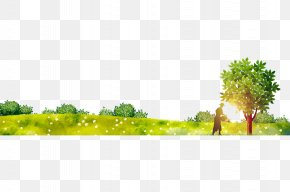 Flash Forest - Tree Forest PNG
