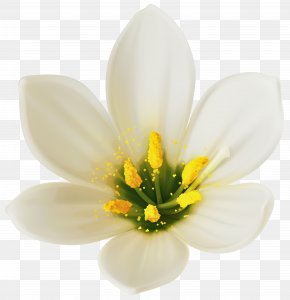 White Flower Clipart Image - Flower Bouquet White Clip Art PNG