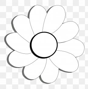 Images Of Black And White Flowers - White Petal Flora Circle Area PNG