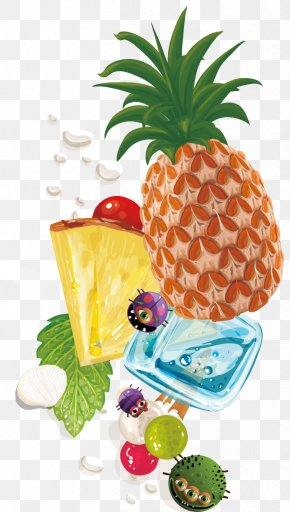Pineapple Fruit Background Vector Material - Holiday Summer PNG