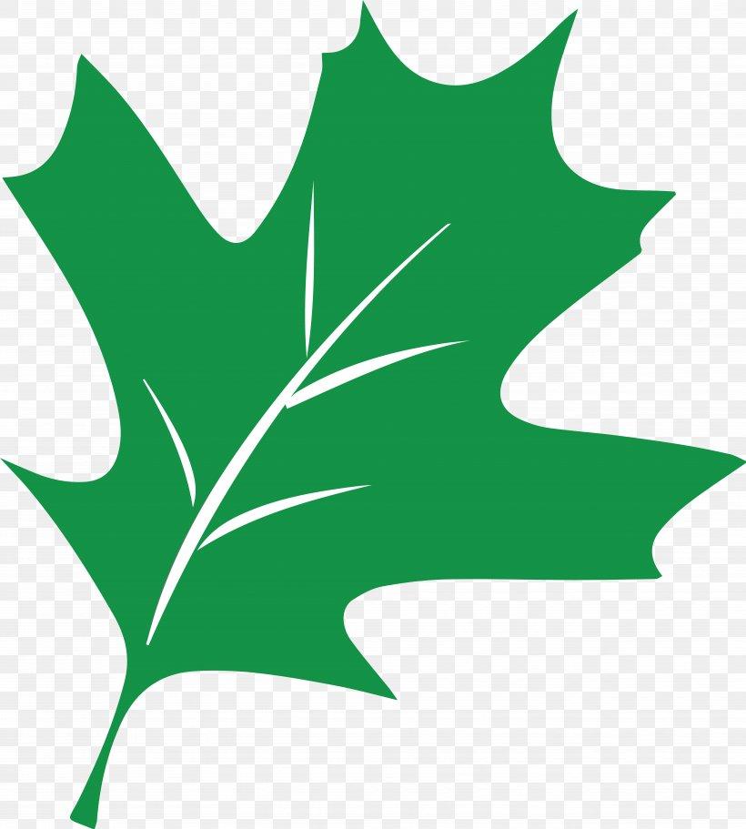 Plant Stem Leaf Flowering Plant Clip Art, PNG, 7223x8033px, Plant Stem, Artwork, Branch, Branching, Flora Download Free
