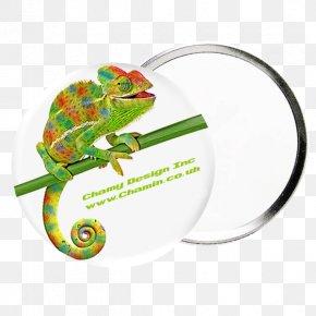 Promotional Panels - Chameleons Real World Psychology Reptile Iguanomorpha Animal PNG