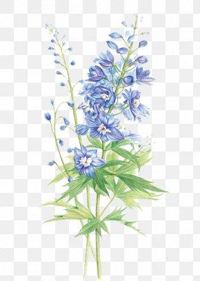 Purple Hyacinth - Hyacinthus Orientalis Floral Design Flower Purple PNG