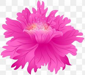 Pink Flower Clip Art Image - Dahlia (Boston Globe-Horn Book Honors Flower Tuber Swan Island Dahlias PNG