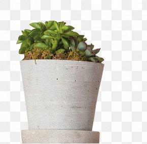 Flower Pot - Home Automation Kits Lighting Flowerpot Houseplant PNG