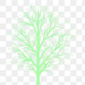 Tree Branch - Tree Branch Woody Plant Plant Stem PNG