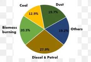 Air Pollution Diagram - Air Quality In Delhi Air Pollution In India Pie Chart PNG