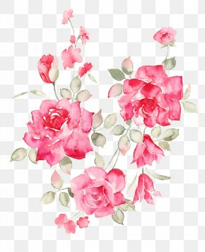 Flower - Flower Rose PNG