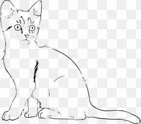 Kitten - Kitten Cat Line Art Drawing PNG