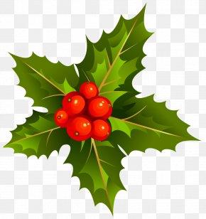 Transparent Christmas Mistletoe Clipart - Mistletoe Clip Art PNG