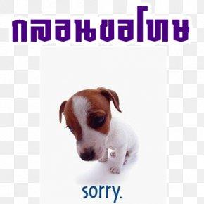Quotation - Sadness Desktop Wallpaper Quotation PNG