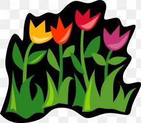 Spring Bulb Planting - Microsoft PowerPoint Presentation TeachersPayTeachers Information PNG