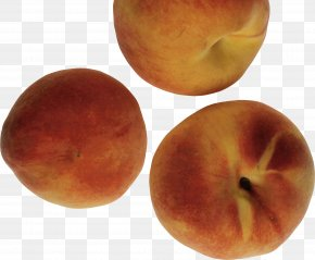 Peach Image - Nectarine Graphics Software PNG