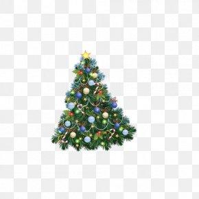 Christmas Trees - Christmas Tree Clip Art PNG