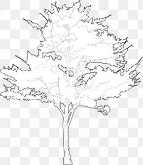 Floral Design /m/02csf Line Art Drawing PNG